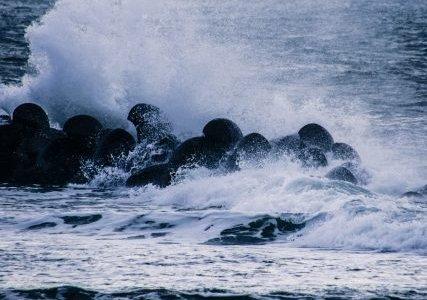 世の中の波に乗ろうとして何かをする人は、まぁおぼれる